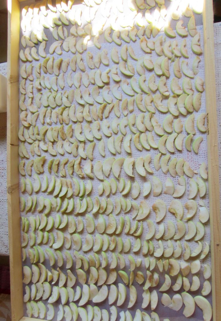 DIY drying apples