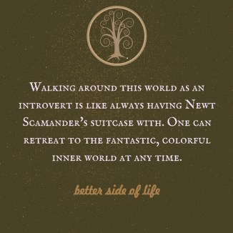 introversion graphic