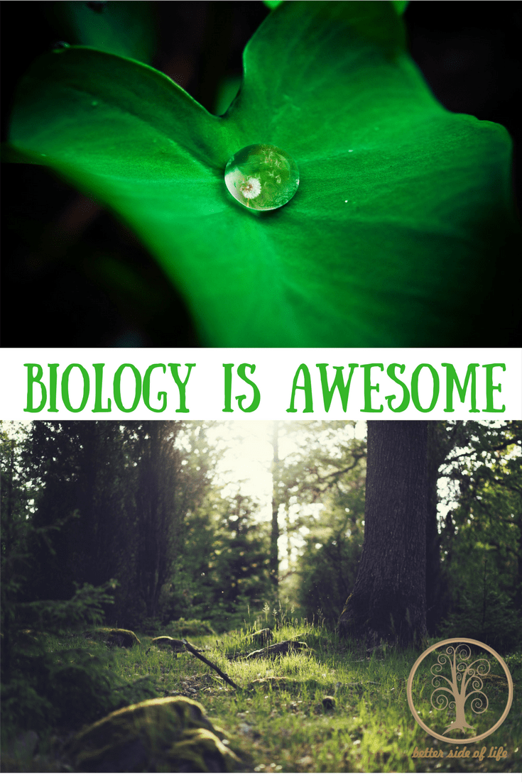 Biology is awesome