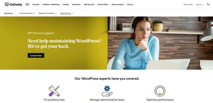 WordPress Maintenance and Support Service