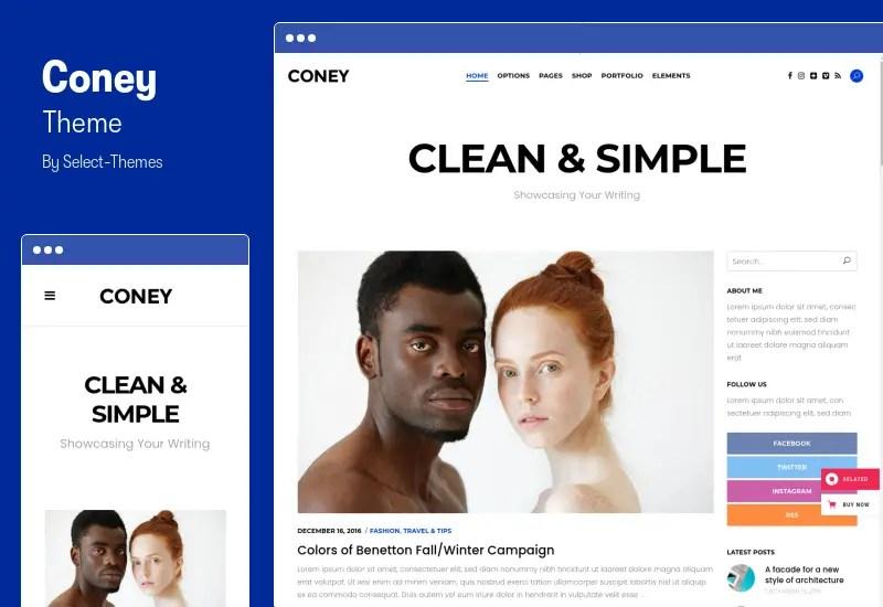 Coney Theme - Blogging WordPress Theme