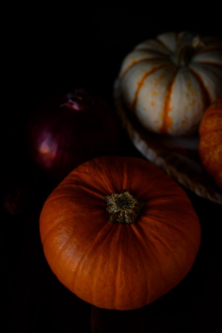 pumpkin cat health fall autumn
