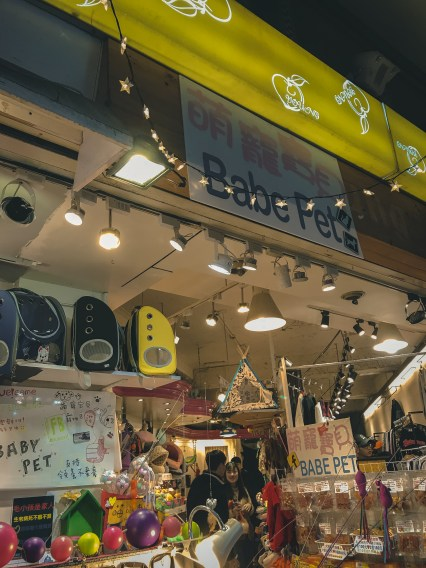 Babe Fat pet store has nice selection goods with affordable price! 台北寵物店