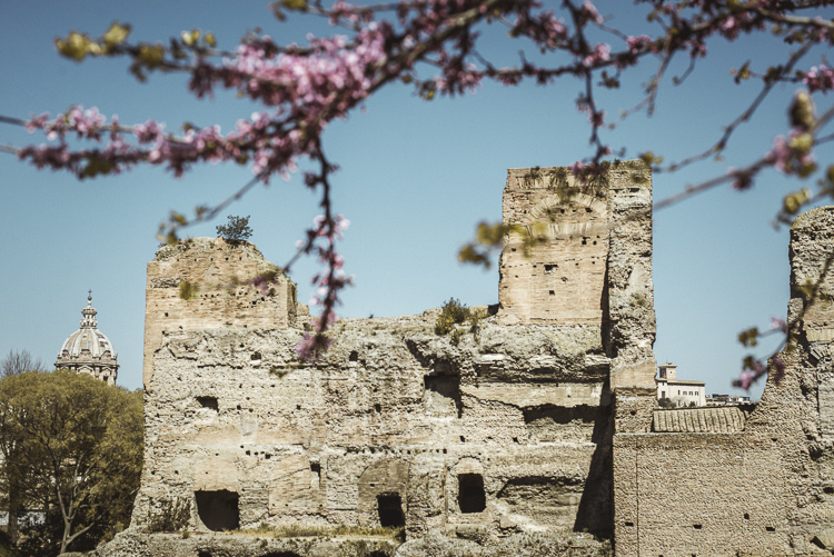 old palace on Palatine Hill in spring time