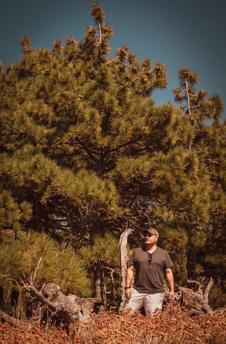 Mt. Laguna trail Cuyamaca California