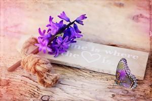 hyacinth-777005_1280