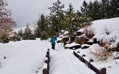 Snowshoe Through the Gardens
