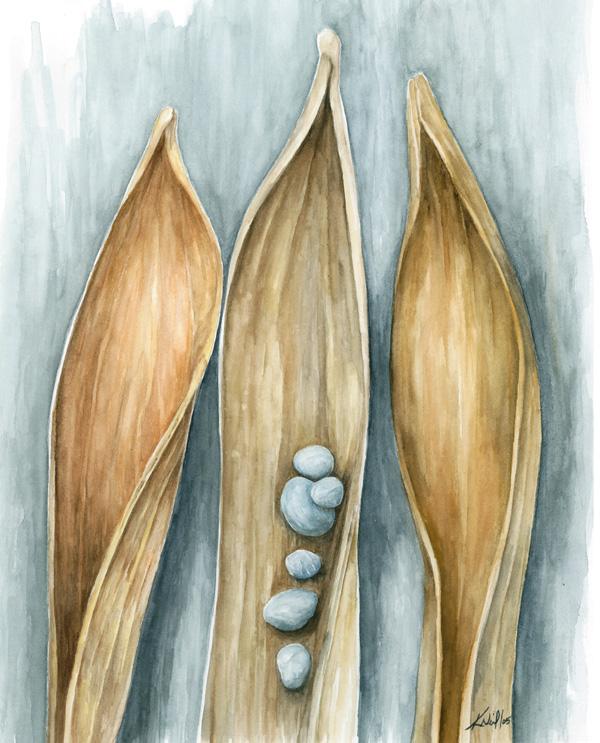 Pebbles, watercolour, 2005