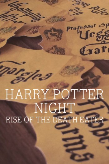 Harry Potter Night and the Rise of the Death Eater