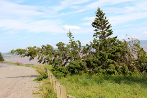 Cape Split Road, Annapolis Valley, Nova Scotia