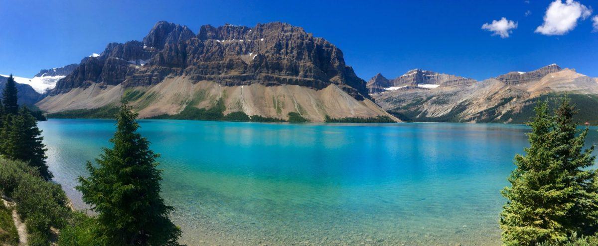 Bow Lake viewpoint, Icefields Parkway, Jasper National Park