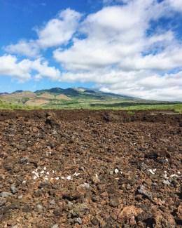 Lava fields, Maui