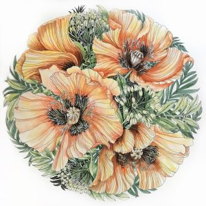 Peach poppies, watercolour
