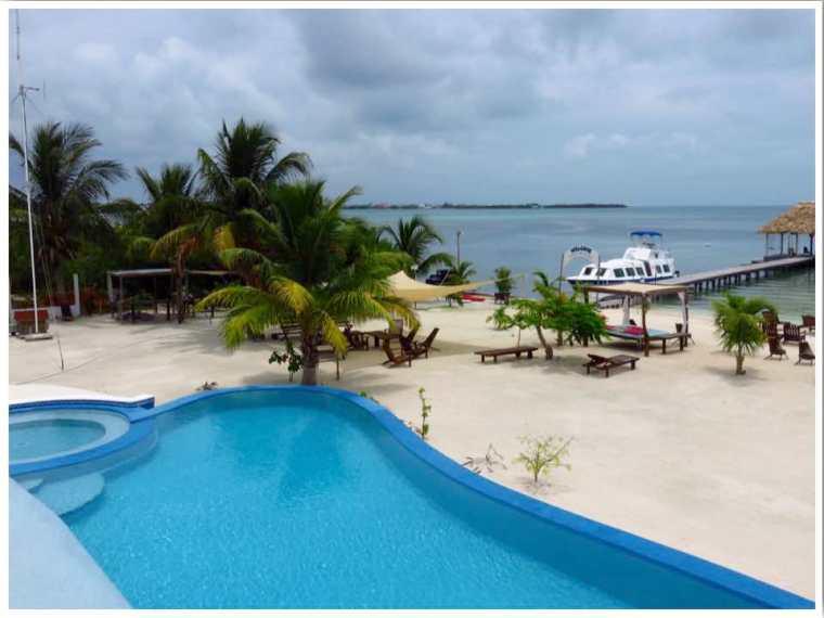 Koko King Belize
