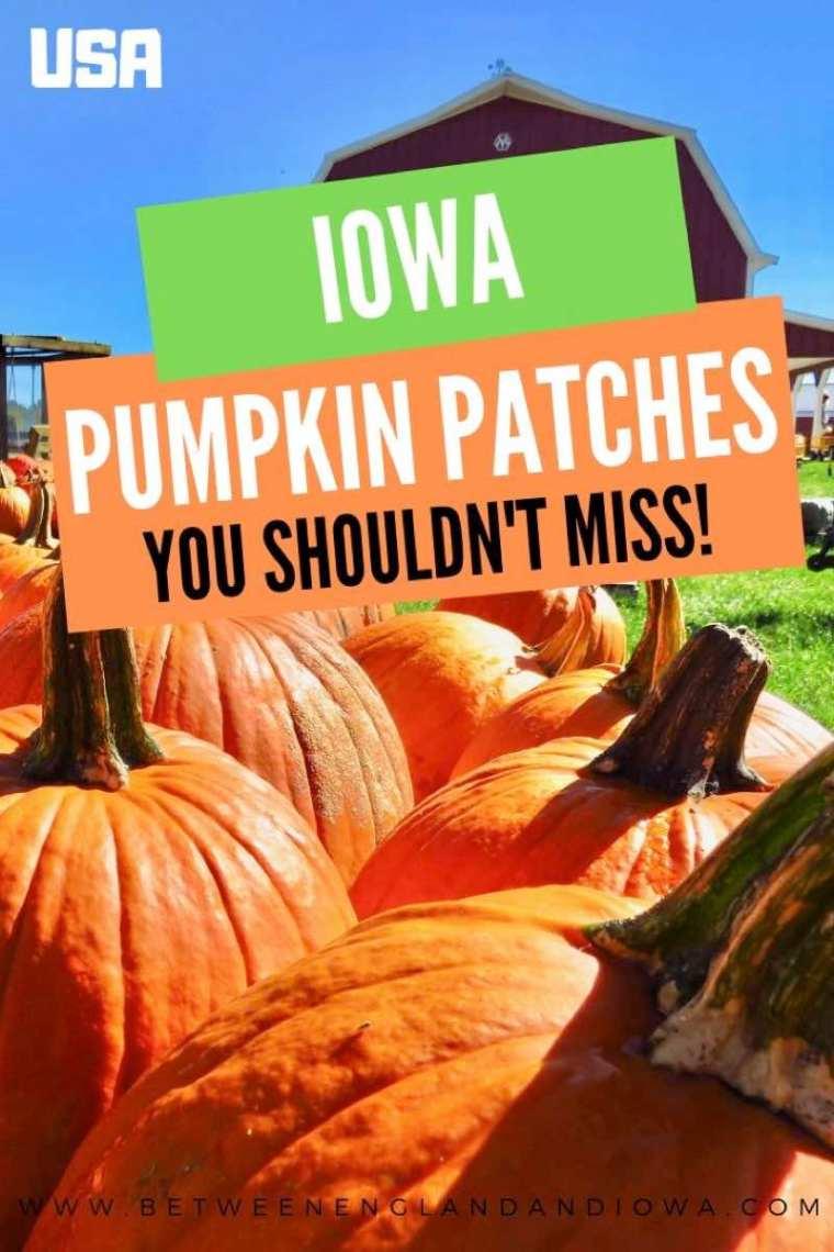 Pumpkin Patches in Iowa