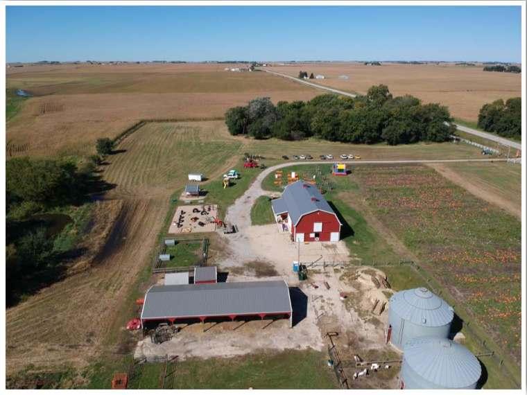 Pumpkin Patches Enchanted Acres Iowa