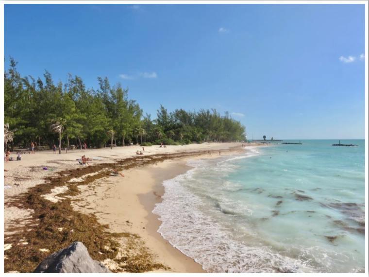 Key West Fort Zachary Beach