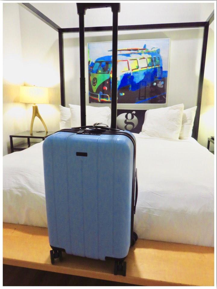 Chester Travel Minima Case