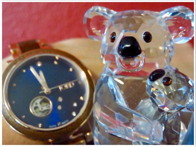 Wood Watch with Swarovski Crystal