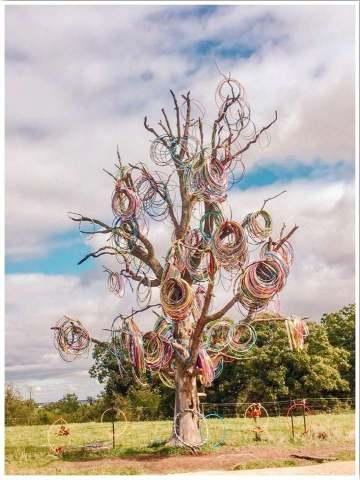 Hula Hoop Tree Iowa located near Anamosa