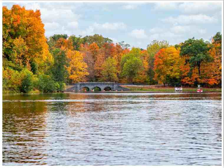 Fall in Cincinnati Ohio by Megan