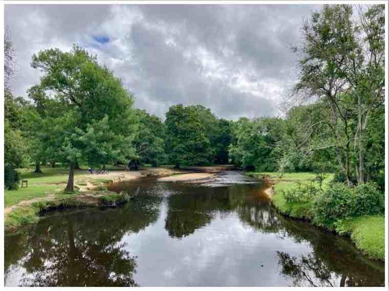 Balmer Lawn Brockenhurst New Forest