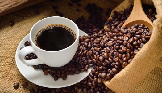 Brew Review: New Haven's Best Coffee Shops