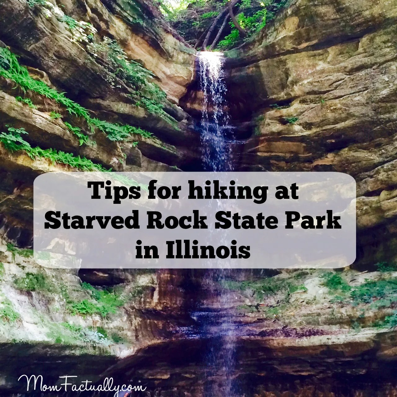 10 tips for hiking at Starved Rock State Park in Illinois (or ...