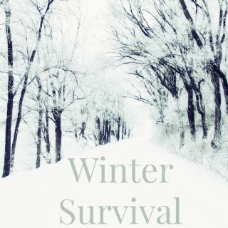 Winter Survival Guide: Tips for making the most of the colder months