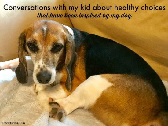 Conversations with my kid about healthy choices inspired by my dog