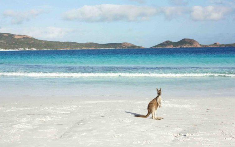 Beach in Esperance, Western Australia