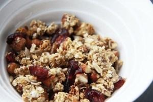 veganistische granola met appel en veenbessen