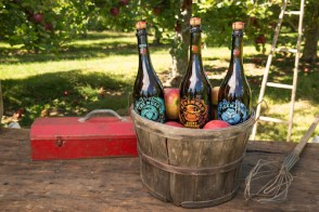 Angry Orchard Cider House Collection