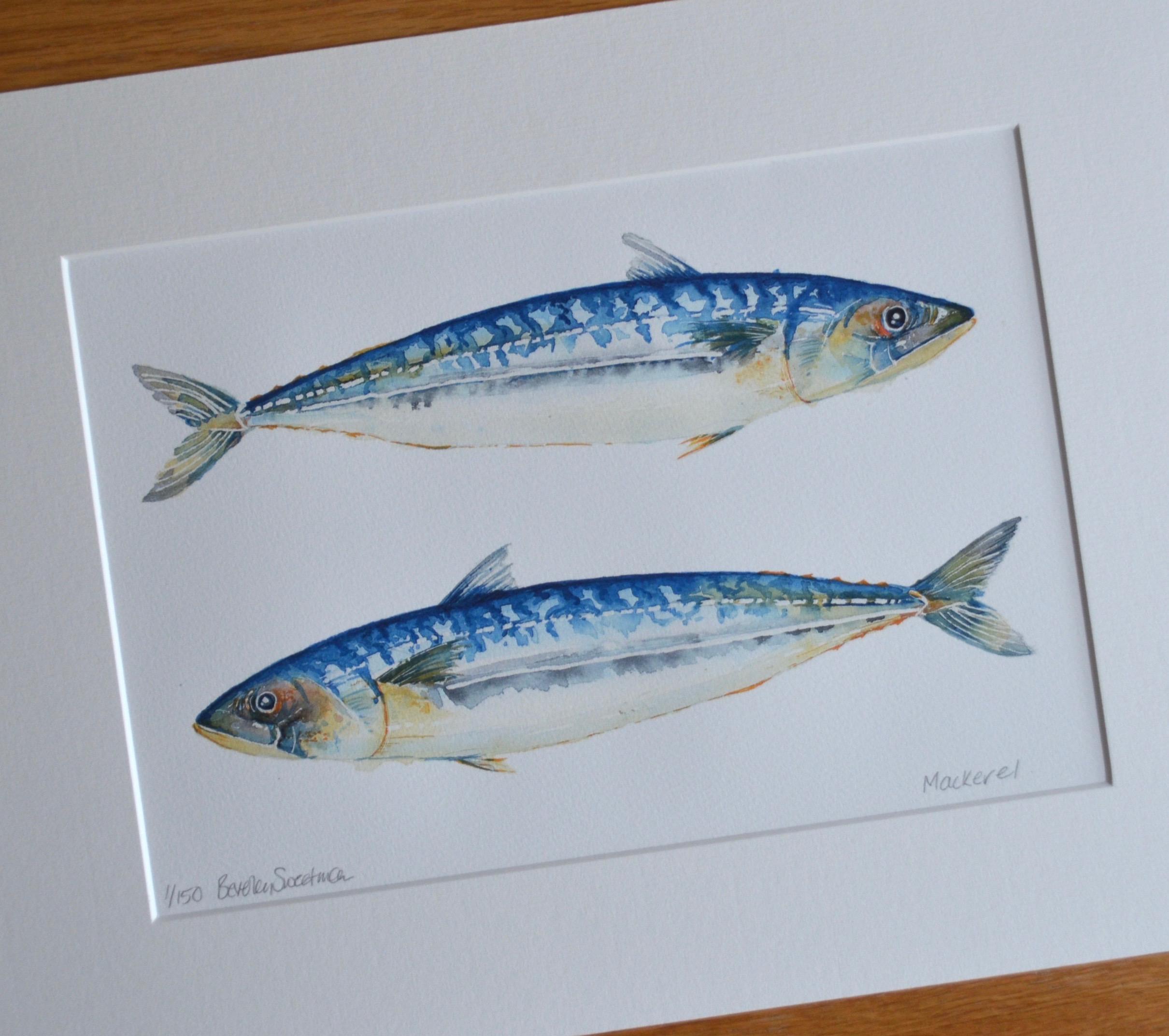 The Rusty Mackerel A4 Print