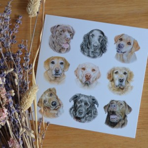 Labradors and retrievers dogs greetings card