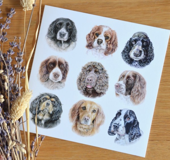 Spaniel dogs greetings card