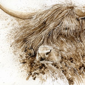 Highland cow watercolour painting