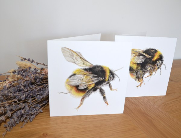 bumble-bee-cards