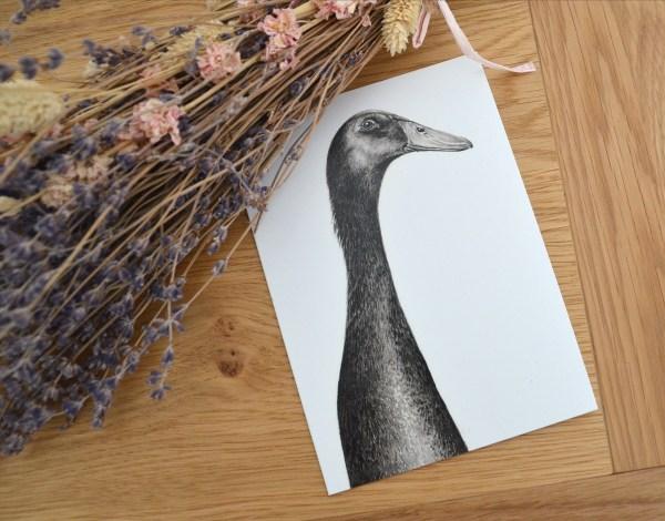 Black indian runner duck greetings card