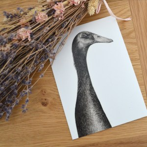 black-runner-duck-card