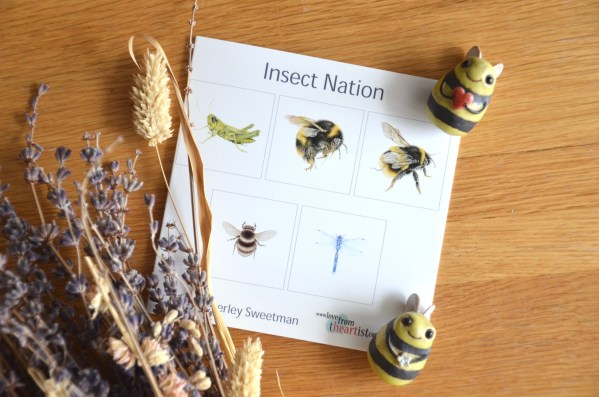 Insects greetings card collection set