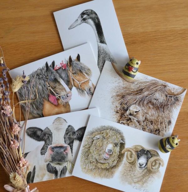 Farmyard animal greetings card set