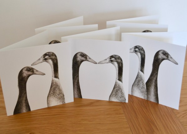 runner-ducks-card-set