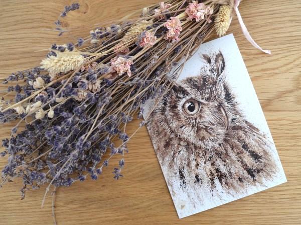 Owl greeting Greetings card