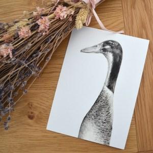 grey-runner-duck-card