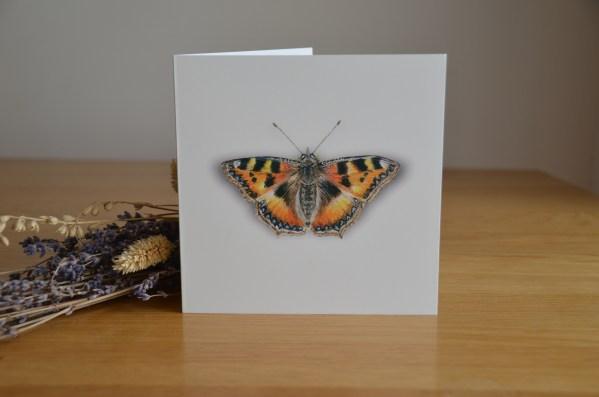 Tortoiseshell butterfly greetings card