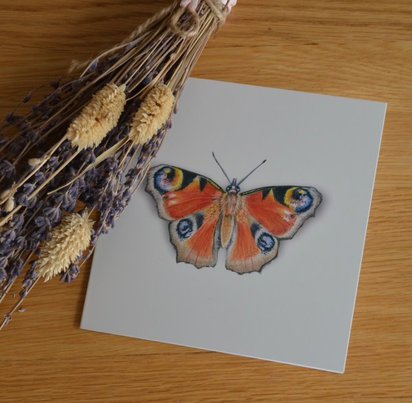 Peacock butterfly greetings card