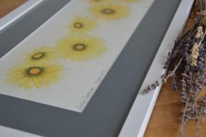 yellow-daisies