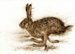 Brown hare running walnut ink painting
