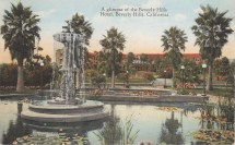 Beverly Hills Vintage Postcards